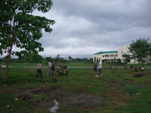 FEED Inc. Volunteers & AFP, Tree Planting at O'Donnell, Capas, Tarlac