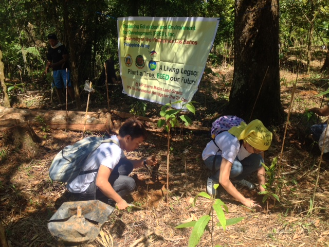 empowering reforestation in the philippines If you see mangrove reforestation projects doing this, report them to the nearest denr, bfar or local government unit of course there is the mega fauna like the dugong and the sea turtle seen around seagrass beds.
