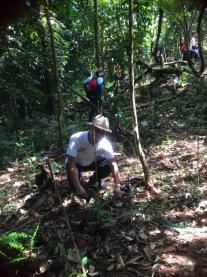 Planting in the Sierra Madres - reforesting with UPLB Forest Guards