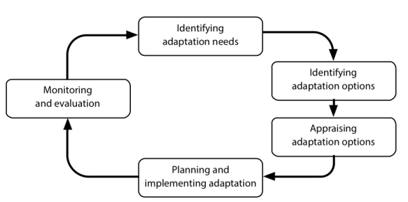 Adaptation Learning Cycle Figure 2.png