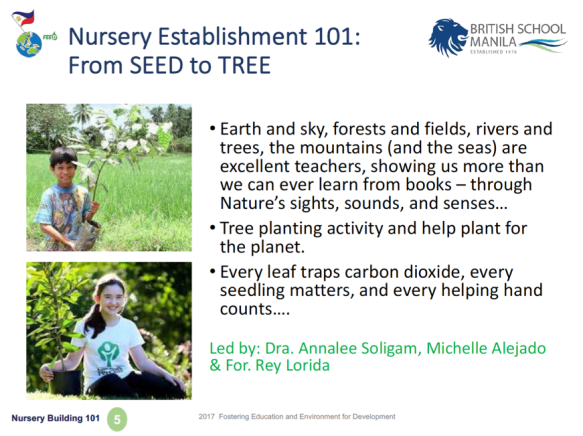 SEED to TREE 101a
