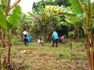 EcoMatcher-FEED-OurBetterWorld-1000Trees32