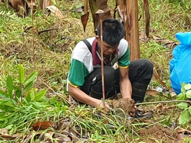 EcoMatcher-FEED-OurBetterWorld-1000Trees35