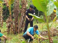 EcoMatcher-FEED-OurBetterWorld-1000Trees42