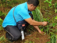 EcoMatcher-FEED-OurBetterWorld-1000Trees48