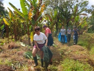 EcoMatcher-FEED-OurBetterWorld-1000Trees52