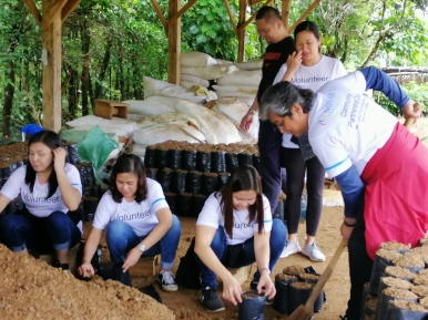Novartis-FEED-CSR-Nursery1